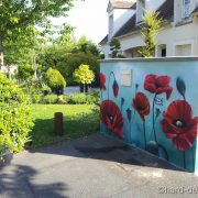 Mur de jardin coquelicots
