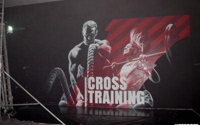Cross Training Brie comte Robert